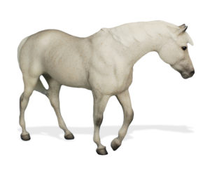 Breyer Test Color Indian Pony Collector's Club 2016