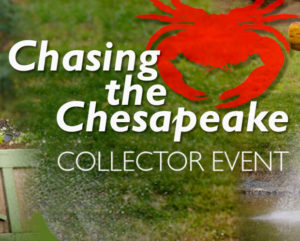 Breyer Chasing The Chesepeake Collector Event