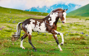 Image result for breyer true north