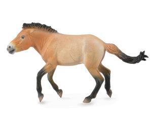Corral Pals Przewalski Stallion 88602