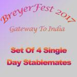 BreyerFest 2017 Single Day Stablemate Set