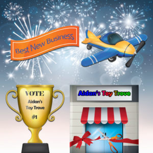 Vote Aidan's Toy Trove